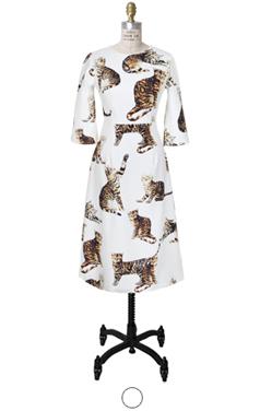cat printed maxi dress