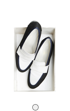 daily canvas loafer